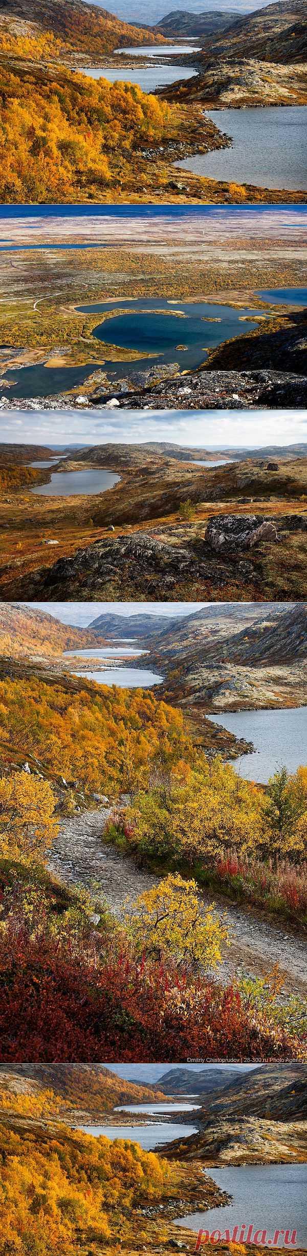 >> Золотая осень на Кольском полуострове. Дорога домой   ФОТО НОВОСТИ