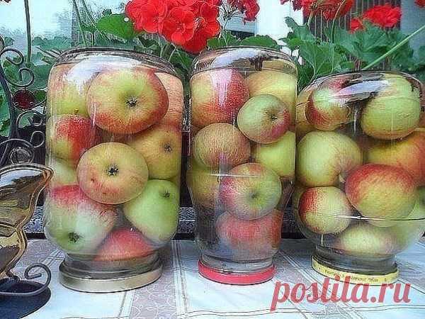 Моченые яблоки Продукты: на 3-х литровую банку 1. Яблоки зимних сортов 2. Соль - 3 ст. ложку 3. Сахар - 3 ст. ложки 4. Лавровый лист - 2 шт. 5. Гвоздика - 2 шт.