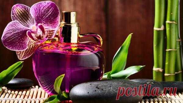 Все для красоты:http://dom-ozhag.mirtesen.ru/blog/43083733453