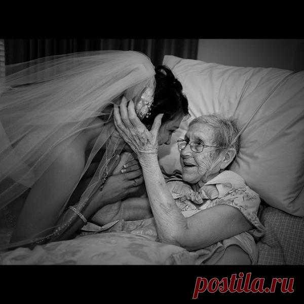 Бабушкино благословение