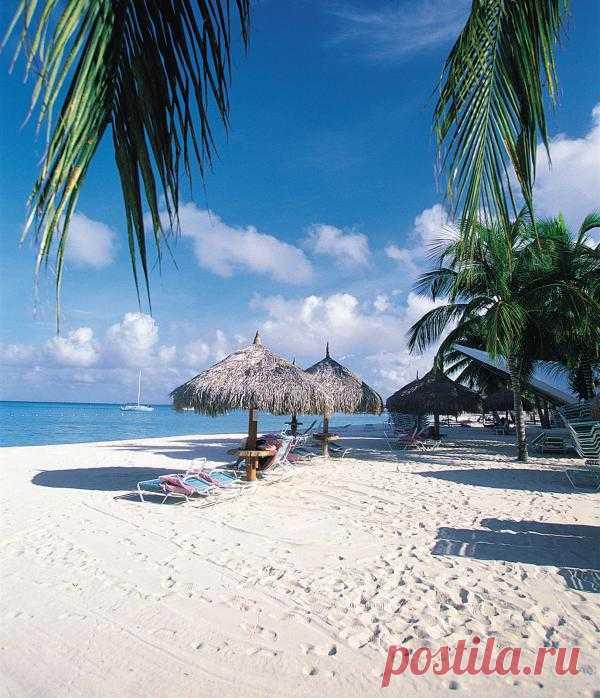 Карибские острова, остров Аруба