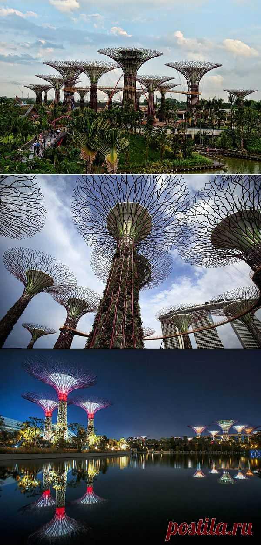 Волшебные сады Сингапура