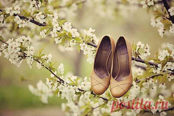 5 советов, как выбрать идеальные свадебные туфли - WeddyWood