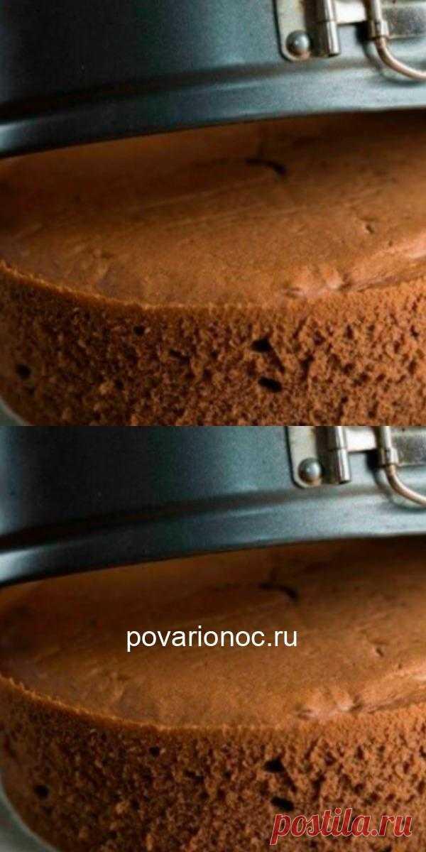 Воздушный шоколадный бисквит. Из него готовят самые разнообразные торты.
