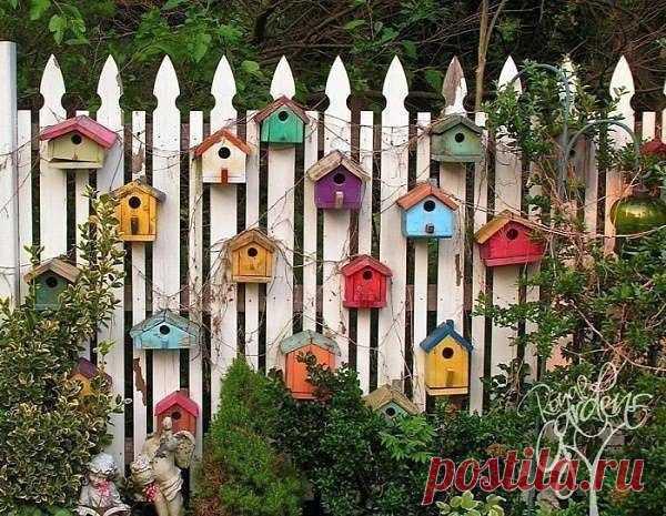 Fence on the seasonal dacha!