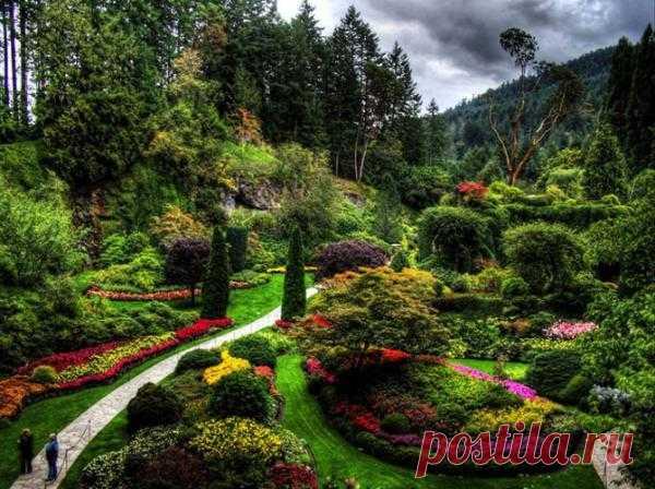 Сад Butchart Gardens в Канаде