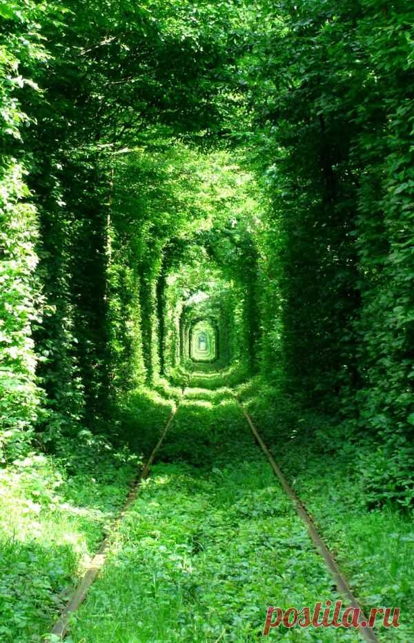 Зеленая миля.