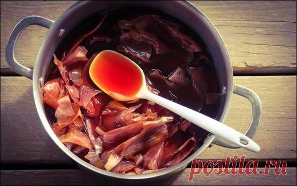 100% рабочий настой луковой шелухи против вредителей в огороде. Дедовский рецепт! | moyasotka | Яндекс Дзен