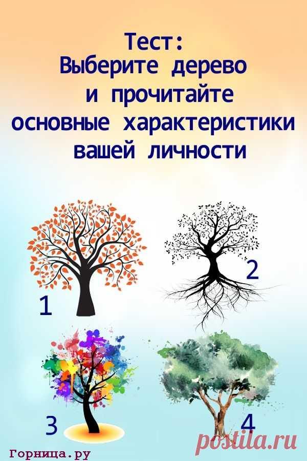 Тест: Выберите дерево и прочитайте основные характеристики вашей личности | ГОРНИЦА