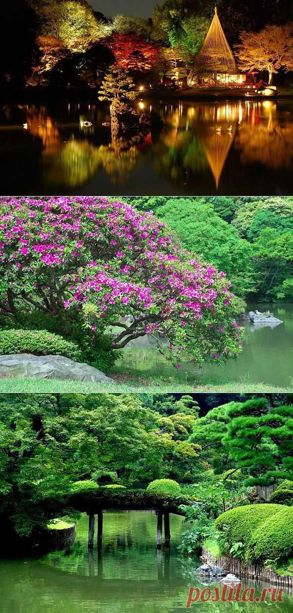 Сад Рикугиэн в Японии (Rikugien garden) / Блог им. AnastaciaTravnikova / Архимир