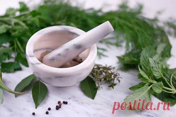Лечение ревматизма с лекарственными растениями.
