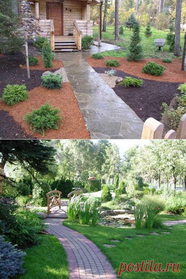 Ландшафтный дизайн красивого сада.