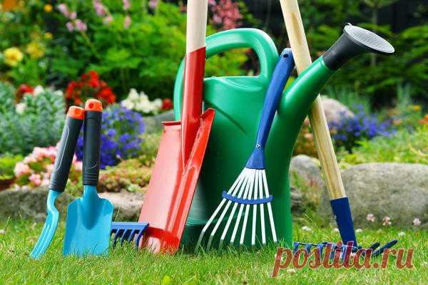 Марганцовка в саду и огороде: способы применения