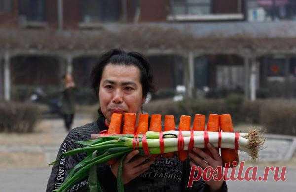 Оказывается, из овощей можно сделать не только салат, но и… симфонию