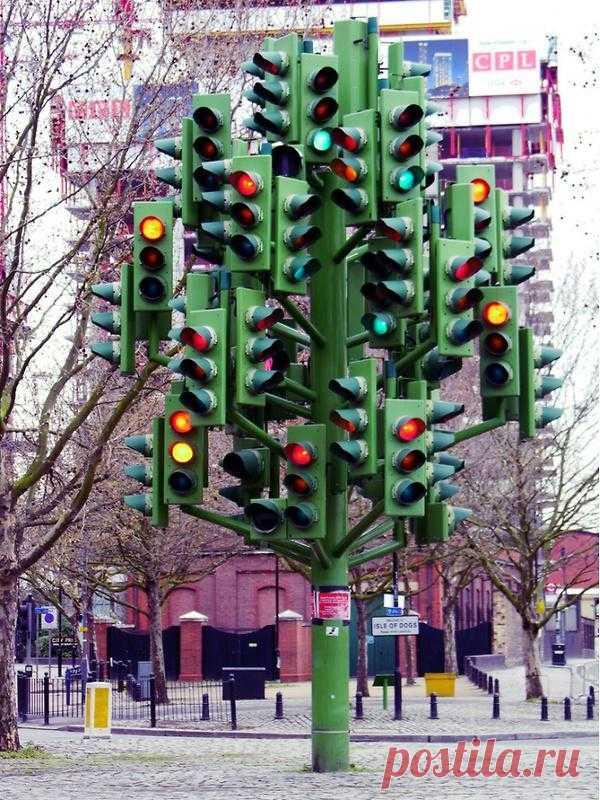Светофорное дерево в Лондоне, Великобритания