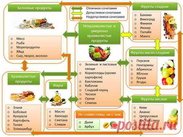 Самая лучшая диета для похудения. Убираем жир с живота. Раздельное питание против лишних кг. | Похудение и стройная фигура | Яндекс Дзен
