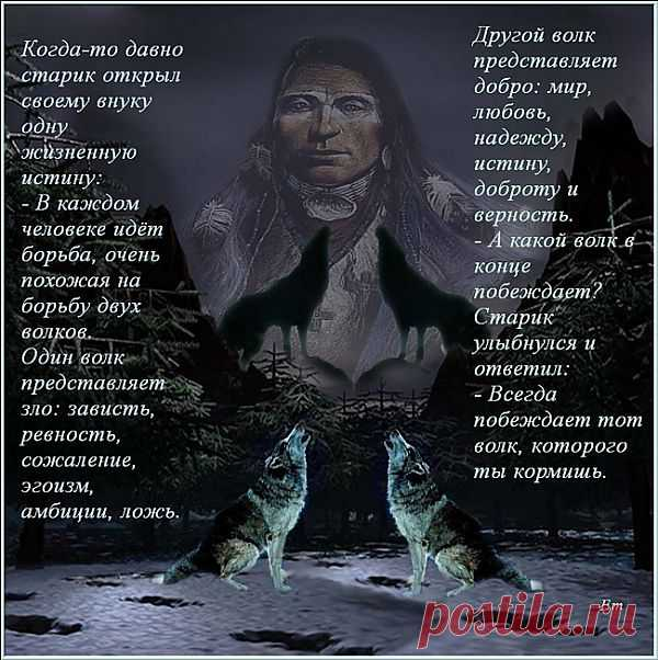 Притча о волках.