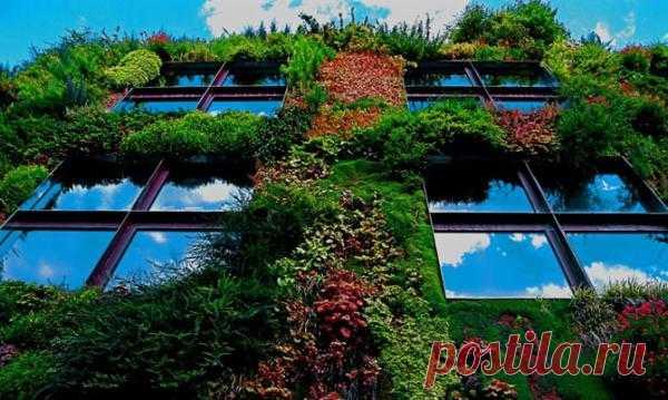 Вертикальный сад Vertical Garden (Musee du quai Branly) во Франции