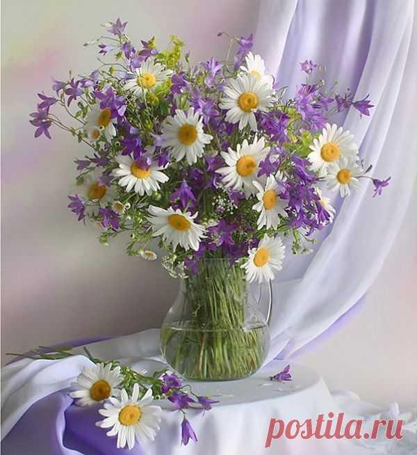 фото красивые цветы: 5 млн изображений найдено в Яндекс.Картинках
