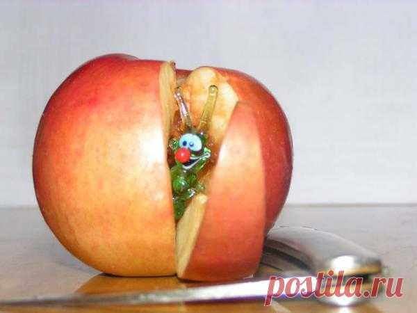 Сюрприз в яблоке