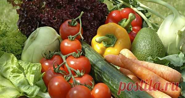 Три мифа об отрицательной калорийности и список самых низкокалорийных продуктов