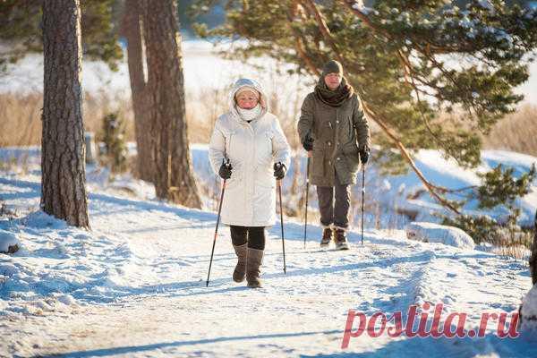 Скандинавская ходьба: дань моде или действительно полезная тренировка?