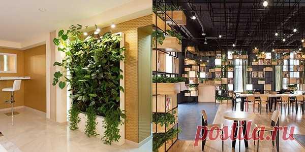 Живая мебель — ноу-хау в дизайне интерьеров — Полезные советы