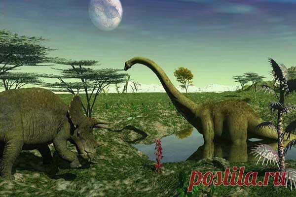 Каким был мир до появления человека - Нет скуки - Сайт хорошего настроения. История эволюции Земли, растянувшаяся на многие тысячелетия, началась, по существу, с нуля. При возрасте земной коры около 4,6 млрд. лет, первые признаки жизни на ее бесплодной поверхности появились спустя миллиард лет после ее формирования. Но понадобилось еще 3 млрд. лет, прежде чем в палеонтологической летописи планеты стали обнаруживаться несомненные останки живых существ.