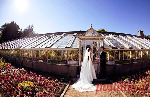 Ирландская сказка: свадьба Марии и Карла - WeddyWood