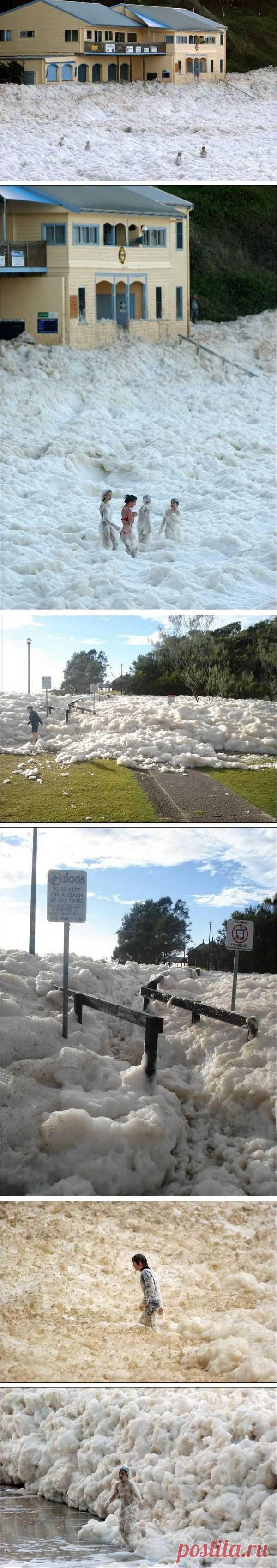 Пожарники отдыхают! Океан взбил пену. Новый Южный Уэльс, Австралия