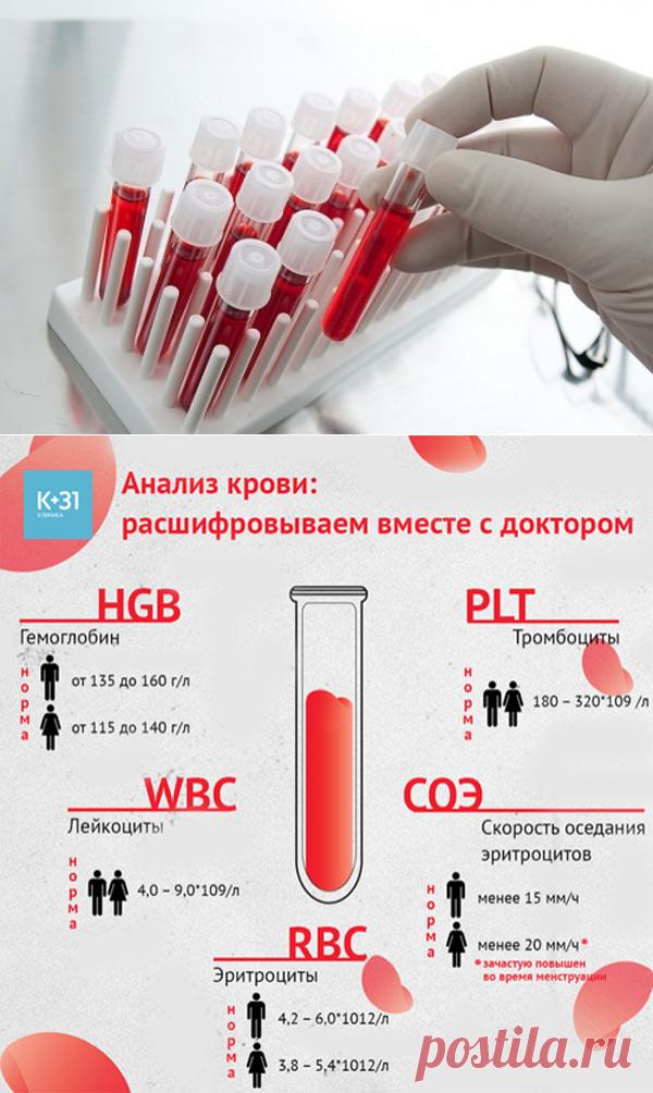 Биохимия крови простатит мочевого пузыря простатит инфекционных заболеваний