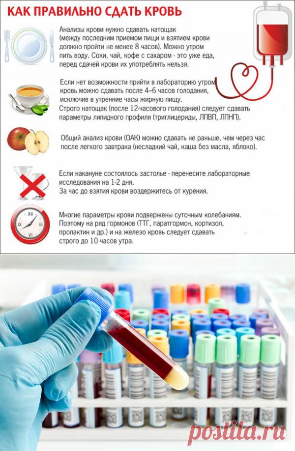 Сахар дзержинск крови на анализ анализа крови общий клинический анализ крови расшифровка