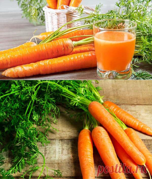польза моркови для организма человека при похудении