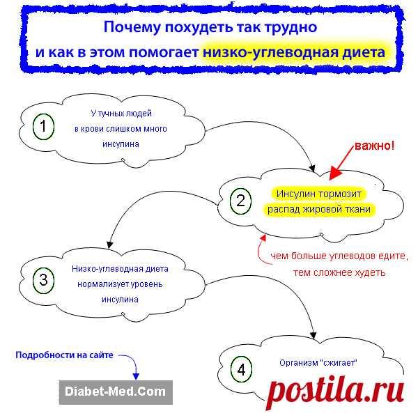 Белки жиры углеводы и клетчатка в диете при диабете