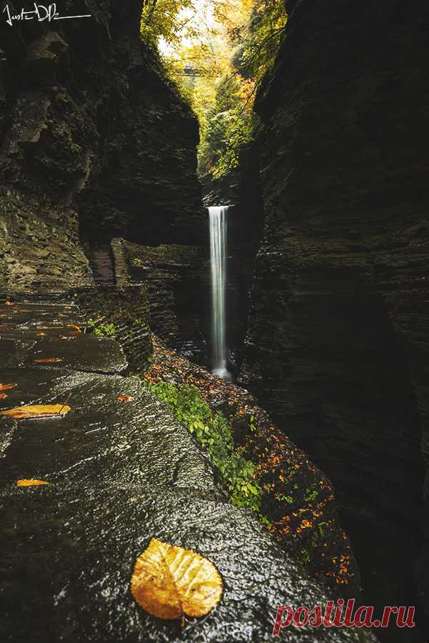 """justinderosaphotography: """"and so it falls """" Un mundo de maravillas…y belleza."""