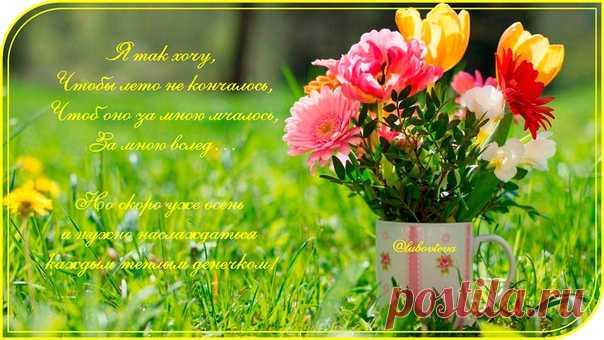 @lubovteva А у нас сегодня прекрасный августовский воскресный денечек! А что у вас?  Рано мы подумали про осень, Показать полностью…