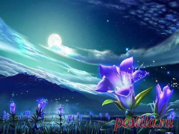 Приглашаем Вас в нашу группу восхитительной красоты цветов! Здесь Вы откроете для себя новый мир волшебства ! vk.com/vechnocvetushierozi