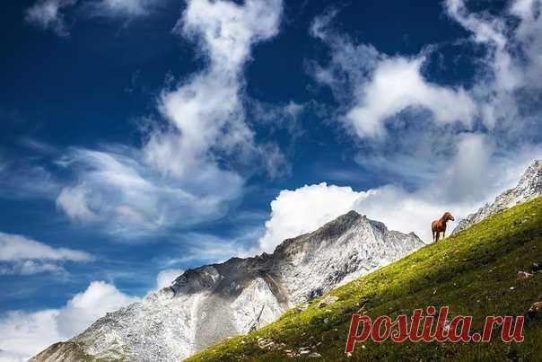 Прогулка по бурятским горам. Автор фото – Алексей Закиров: nat-geo.ru/community/user/42191/