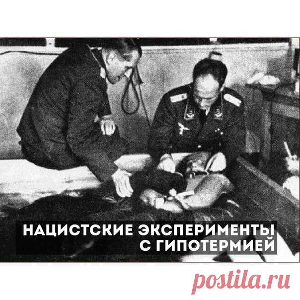 nazi medical war essay Essays on nazi the nazi is one of the most popular assignments among students' documents if you are stuck with writing or missing ideas, scroll down and find inspiration in the best samples.