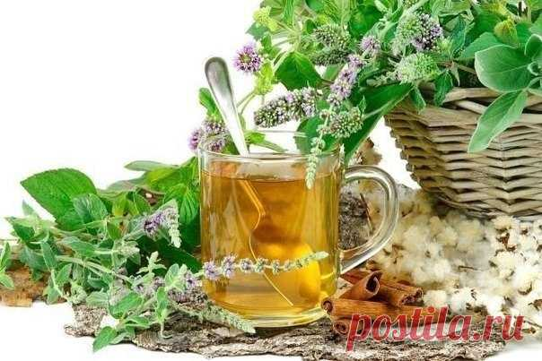 BROTH OF HERBS FOR STRENGTHENING OF VESSELS