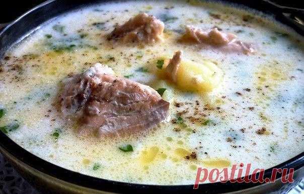 Лёгкий и нежный суп — вкусно и сытно     Замечательный вариант!          Ингредиенты: Консервированная горбуша — 1 банкаКартофель — 1 штПшено — 100 гВода — 1 лСливочный плавленный сыр — 100 гЗеленьСольПерецСливочное масло — 1 ст. л. Приг…