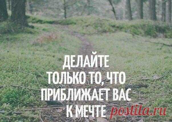 Мечтайте, ищите тропинки...  Юлия Шашева