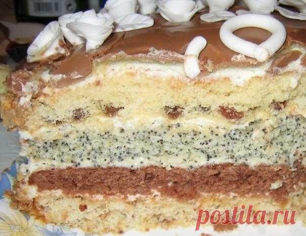 Торт проще простого   Коржей всего четыре: с изюмом, какао, маком, орехамиИнгредиенты:для одного коржа:1 яйцо1 ч. ложка крахмала0,5 ч. ложки соды или разрыхлителя0,5 стакана сахара0,5 стакана сметаны0,5 стакана мукиПриго…