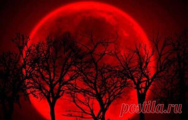 В мае произойдет новолуние и соединение трех планет в Тельце (стеллиум), а также полное лунное затмение в Стрельце. Суперлуние 2021 года ожидается 26 мая и будет сопровождаться полным лунным затмением.  Энергетическое влияние затмения будет очень мощным и продлится до 10 июня - до кольцевого солнечного затмения. Это затмение называют ещё кармическим. Показать полностью...