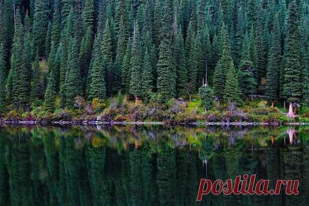 Кольсайские озёра, Казахстан. Автор фото — max claytor, участник фотоконкурса «Казахстан — энергия будущего»: