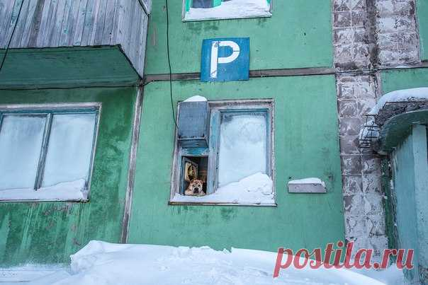 Воркута в фотографиях Юрия Будильникова: nat-geo.ru/photo/user/299154/