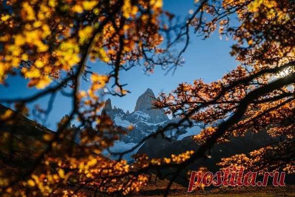 Гора Фицрой, Патагония. Автор фото – Виталий Ионов: nat-geo.ru/photo/user/343700/