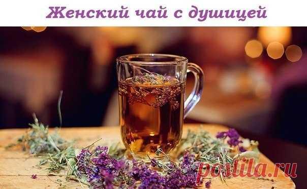 Женский чай с душицей, польза, рецепт приготовления