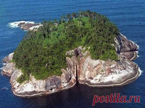 """Самый  опасный  остров  в  мире  Кейманб -  Гранди.Его  название  переводится  как """"Змеиный  остров"""",а  расположено  змеиное  логово  на побережье  солнечной  Бразилии .На 1 кв.  м  по  статистике  водятся около  5  змей.Жители  считают,  что  сам  дъявол  собрал  всех  самых  опасных  змей и  поместил  туда."""