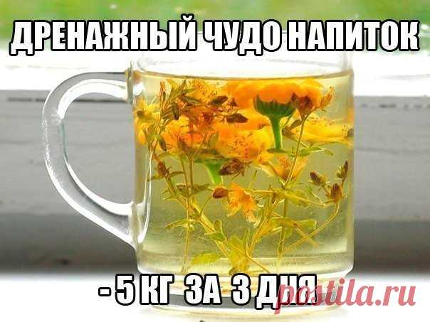 Wonderful drinks will help you with fight against extra kilos, hypostases and cellulitis.
